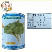 【向花緣】切葉白菜 - 1磅(日本原裝)