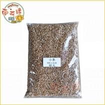 【向花緣】小麥種子 - 600g/包