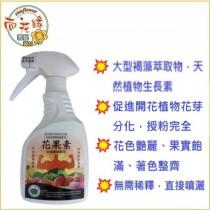 【向花緣】花果素 天然植物激素 促進授粉著果 - 500ml