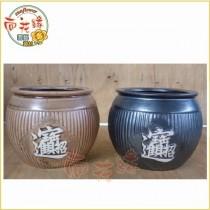 【向花緣】招財進寶陶瓷盆(應景盆)