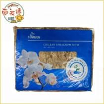【向花緣】智利水苔(水草 ) - 1kg