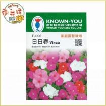 【向花緣】農友 日日春 - 花卉種子