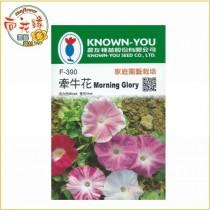 【向花緣】農友 牽牛花 - 花卉種子