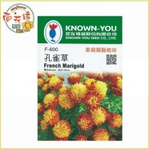 【向花緣】農友 孔雀草 - 花卉種子