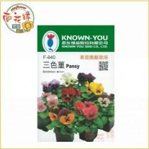 【向花緣】農友 三色董 - 花卉種子