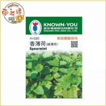 【向花緣】農友 香薄荷 (綠薄荷) - 香藥草種子