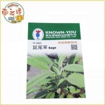 【向花緣】農友 鼠尾草 - 香藥草種子