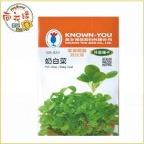 【向花緣】農友 奶白菜 - 特選種子