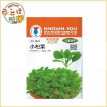 【向花緣】農友 小松菜 - 特選種子