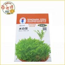 【向花緣】農友 水白菜 - 特選種子