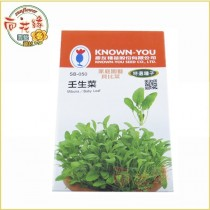 【向花緣】農友 壬生菜 - 特選種子