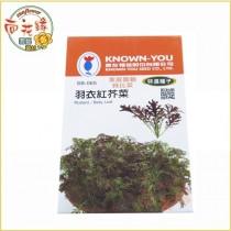 【向花緣】農友 羽衣紅芥菜 - 特選種子