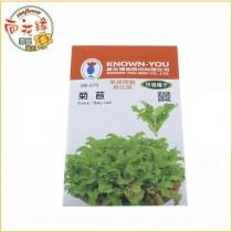 【向花緣】農友 菊苣 - 特選種子