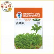 【向花緣】農友 芝麻菜 - 特選種子
