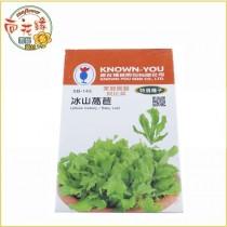 【向花緣】農友 冰山萵苣 - 特選種子