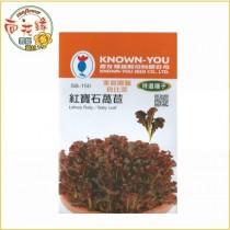 【向花緣】農友 紅寶石萵苣 - 特選種子