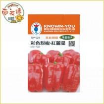 【向花緣】農友 彩色甜椒 - 紅麗星 - 特選種子
