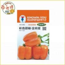 【向花緣】農友 彩色甜椒 - 金明星 - 特選種子