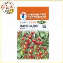 【向花緣】農友 小番茄 - 紅珍珠 - 特選種子