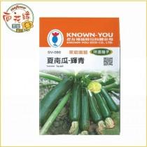 【向花緣】農友 夏南瓜 - 輝青 - 特選種子