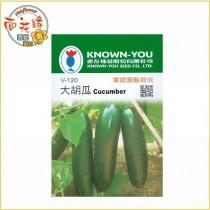 【向花緣】農友 大胡瓜 - 瓜果種子