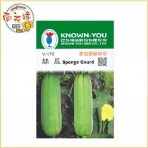 【向花緣】農友 絲瓜 - 瓜果種子