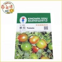 【向花緣】農友 番茄(大果) - 瓜果種子
