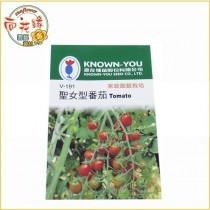 【向花緣】農友 聖女型番茄 - 瓜果種子