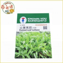 【向花緣】農友 尖葉萵苣(A菜) - 蔬菜種子